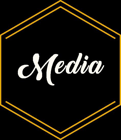 Start Up Media