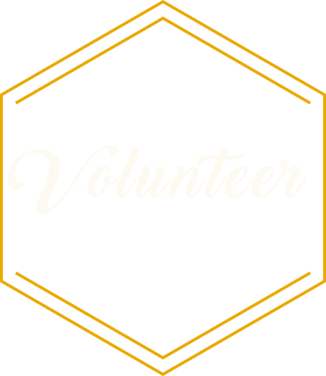 Volunteer and Donation Options